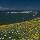 La Baule, «Le Golfe du Morbihan», 60 min.